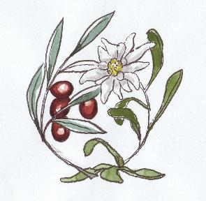 Amiti�s gr�co-suisses